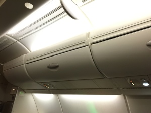 Overhead bins at the window seats