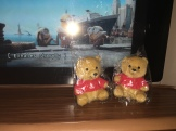 SQ Teddy Bears