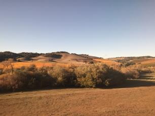 11 - Dried Californian Plains