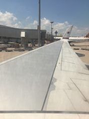 View of the wing (and the winglet)