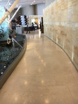 Walkway into the lounge with water features