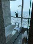 Bath tub with a view