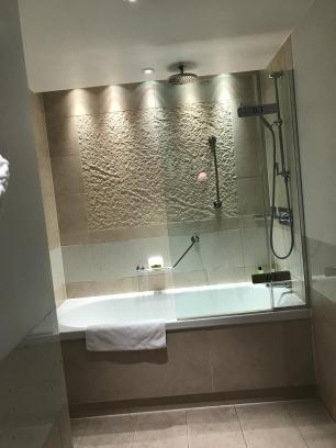 Shower/Bathtub area