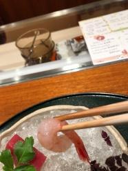 Sashimi 5