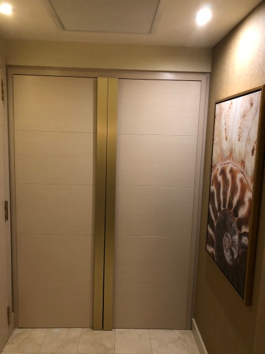 Well hidden closet
